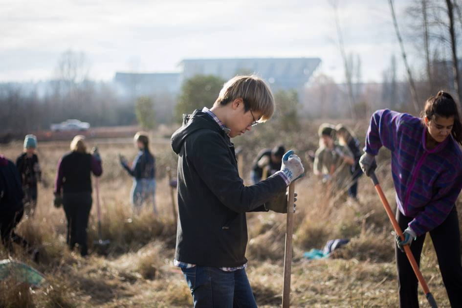 MLK Day of Service: Enhancing the UW Farm's pollinator hedgerow