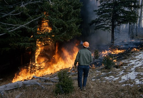 Wildfires and Humans in the Western United States