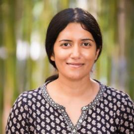 Inorganic Chemistry Seminar: Prof.  Hemamala Karunadasa