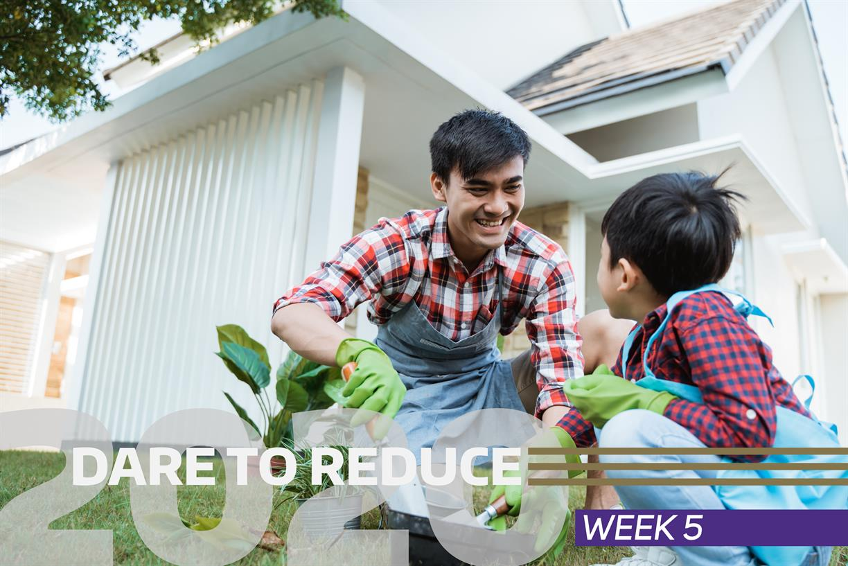 Dare to Reduce with UW Recycling and UW Sustainability!