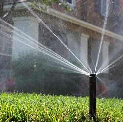 Irrigation Training for Professionals
