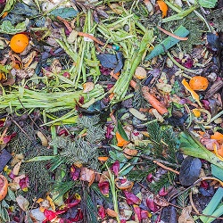 Composting Processes and Methods