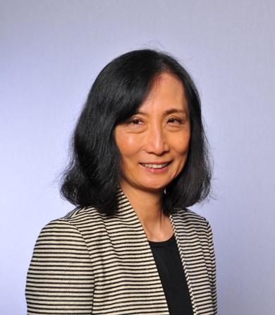 VIRTUAL - CEI Interdisciplinary Seminar: Lin Chen, Northwestern University, Argonne National Laboratory