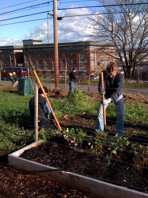 Earth Day @ UW Tacoma's Giving Garden