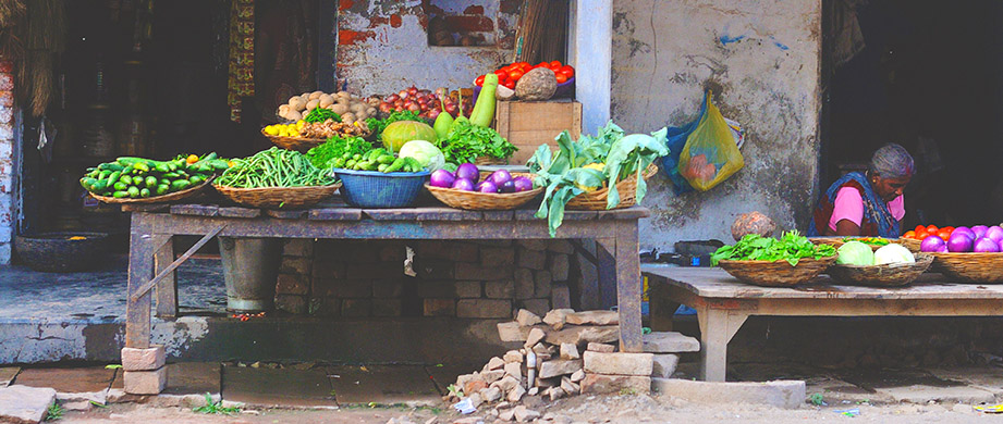 Placing Nutrition at the Forefront: From Global to Local
