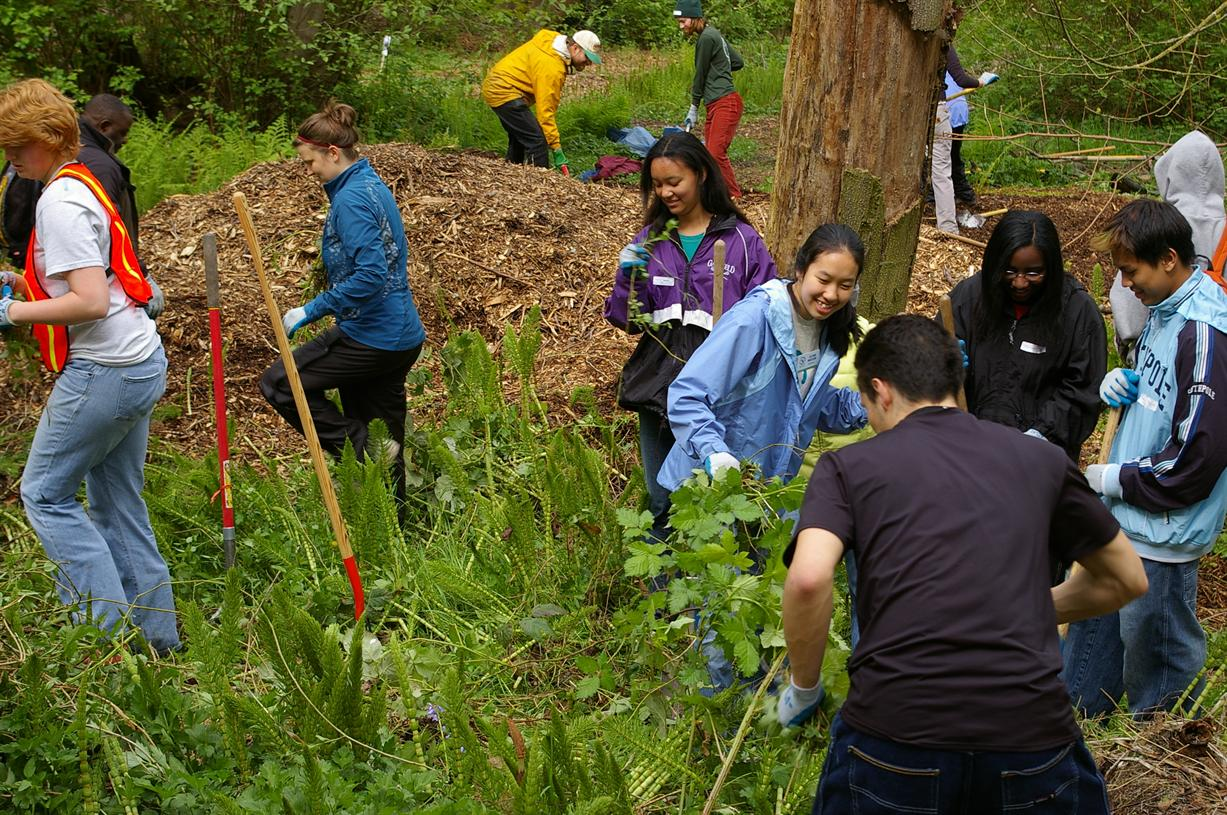 Earth Day Service at Washington Park Arboretum