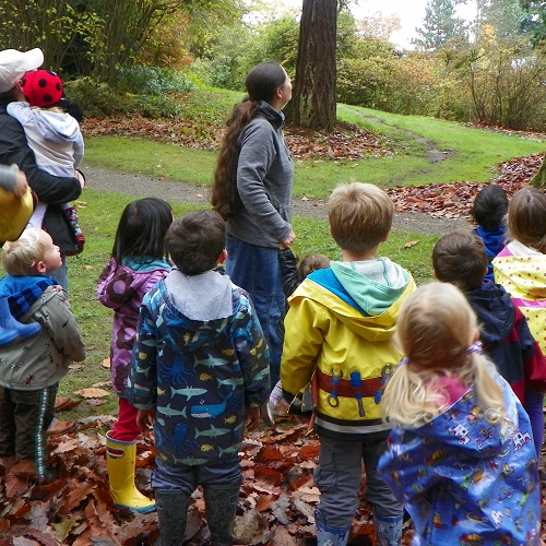 Family Nature Class: Seeing and Touching the Forest