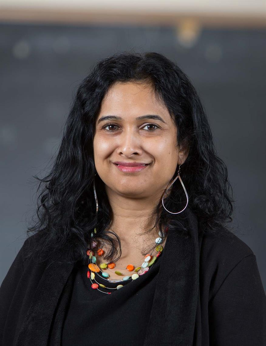 Advances in Higher Education Research Seminar with Manka Varghese