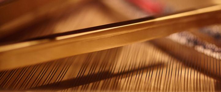 Beethoven Piano Trios: Craig Sheppard, piano; Sæuun Thorsteinsdóttir, cello; Rachel Lee Priday, violin