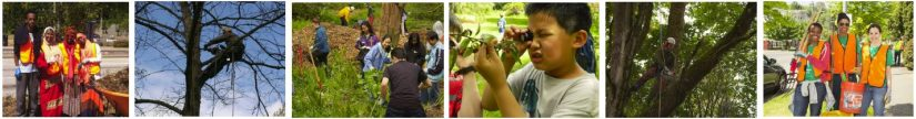 2017 Urban Forest Symposium: Equity and the Urban Forest