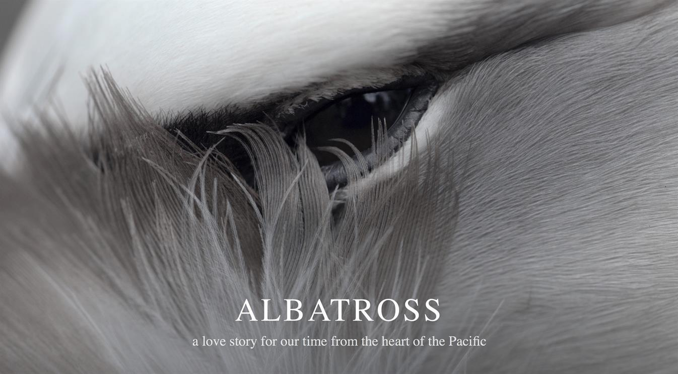 Workshop with 'Albatross' Filmmaker Chris Jordan