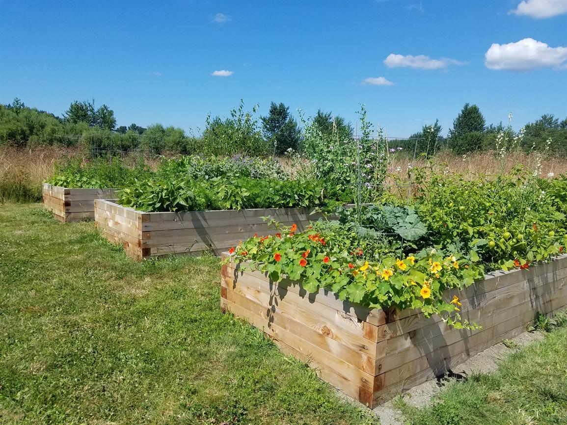 Garden Work Party