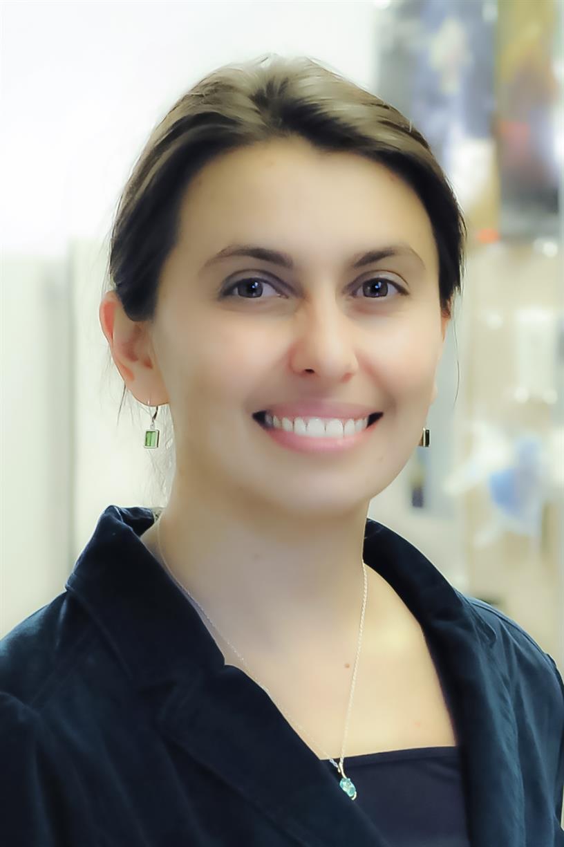 QUAL Speaker Series | Katya Drozdova on Exploring Case Studies with Information Analytics