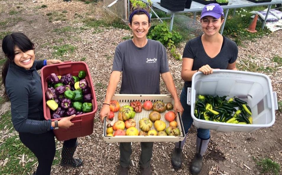 UW Farm Volunteer Hours
