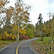 Arboretum Loop Trail Grand Opening