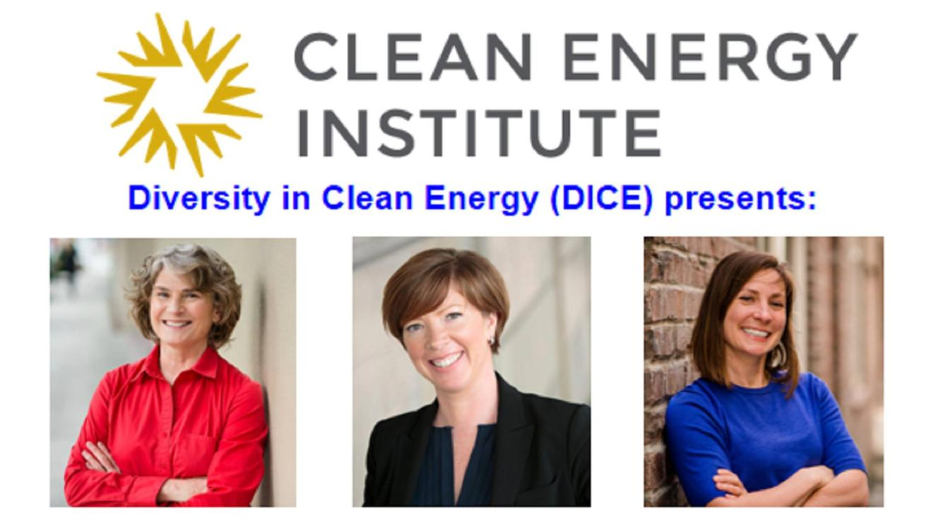 Diversity in Clean Energy brown bag lunch