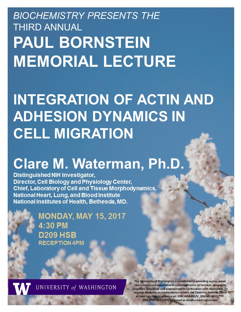 Paul Bornstein Memorial Lecture, Dr. Claire Waterman, NIH/NHLBI