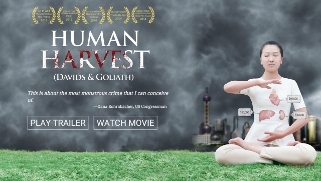 Human Rights in China: Human Harvest Documentary Screening