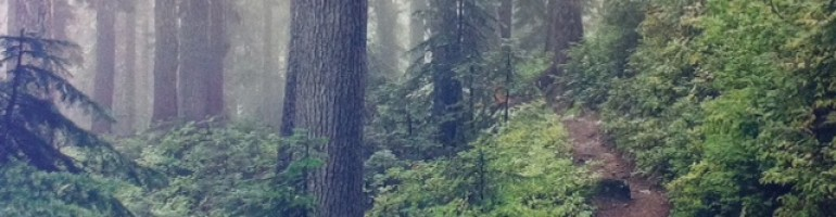 Ecological Forestry in the Pacific Northwest