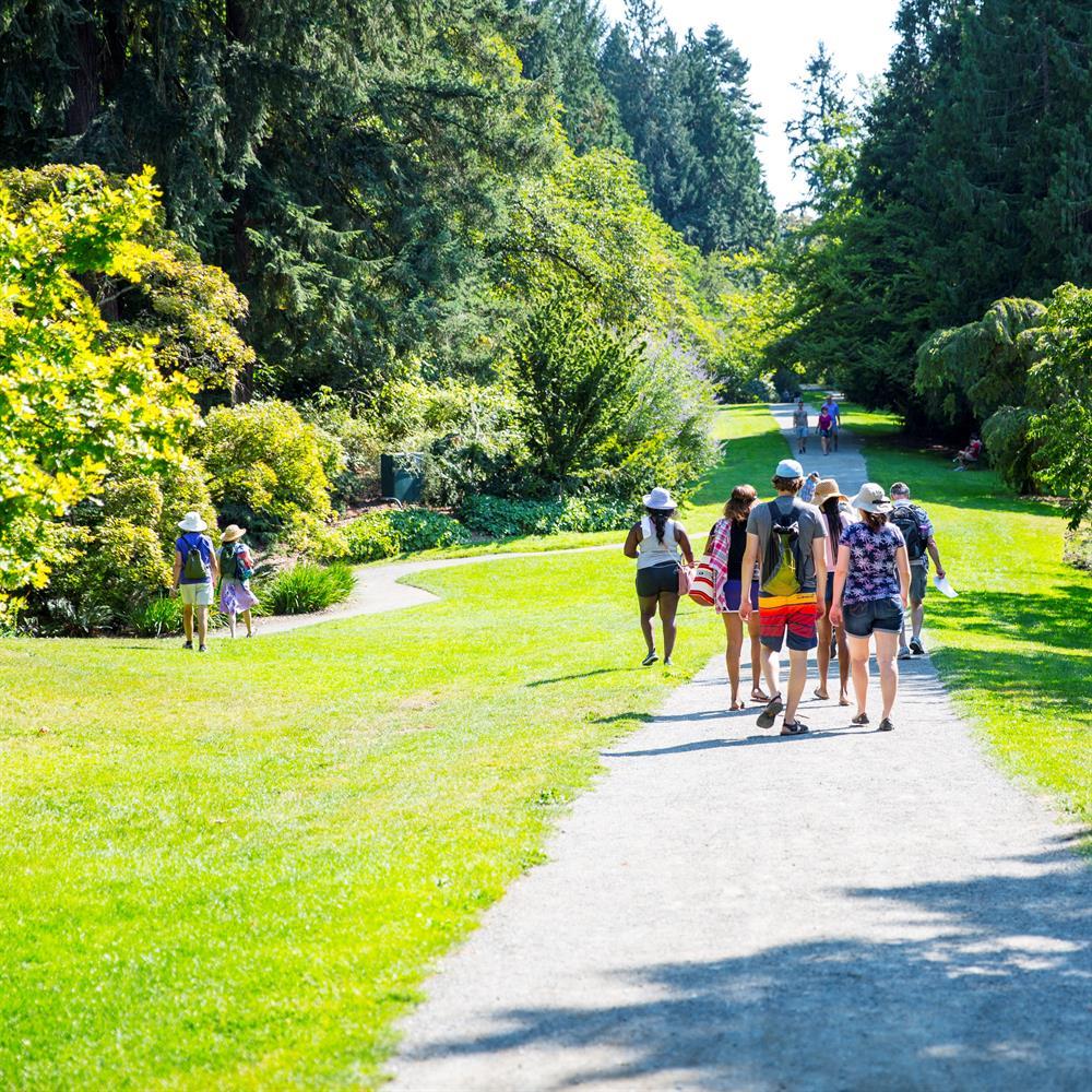 Curator Tour: Late Summer in the Arboretum